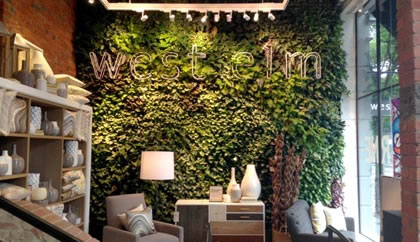 green walls vertical garden