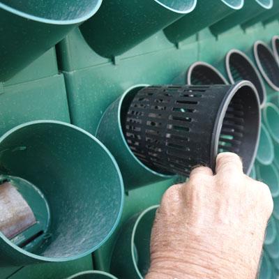 TPR290 grow pot detail