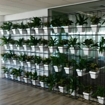 attache pot plant vertical garden