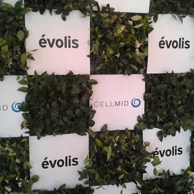 green media walls