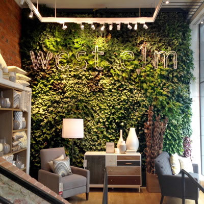 vertical garden construction west elm