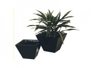 sprite - WEDGE MINI GARDEN POT HIRE