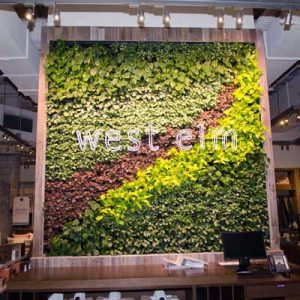 West Elm Melbourne Green Wall 400x400