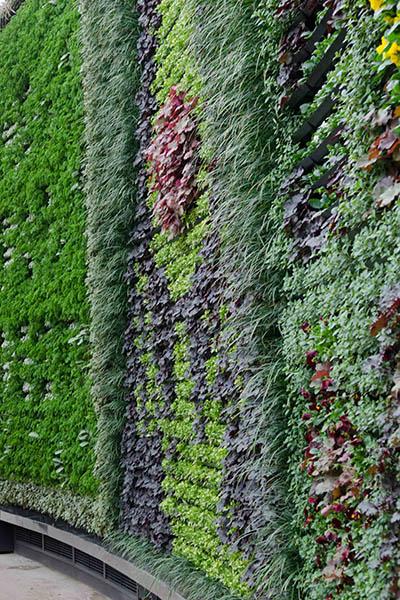 RBGS Green wall-39-2-600hx400w