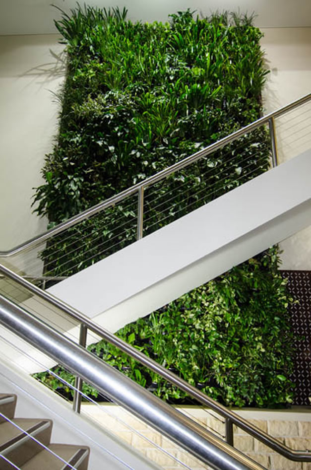 green wall examples
