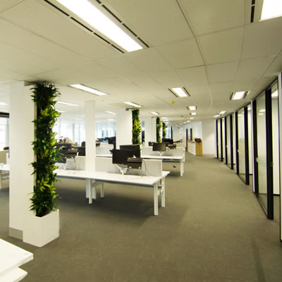 horticulture of australia custom build green wall