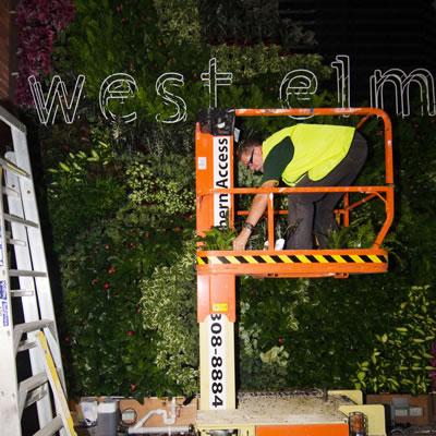 vertical garden construction west elm