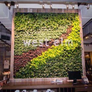 West Elm Melbourne Green Wall 400x400