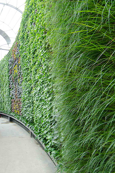 RBGS Green wall-17-2-400wx600h