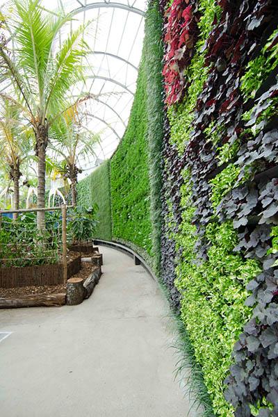 RBGS Green wall-2-2-400x600w