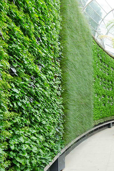 RBGS Green wall-27-2-400wx600h