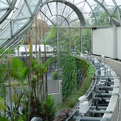 Royal Botanic Garden Sydney Green Wall