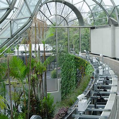 royal botanic garden green wall