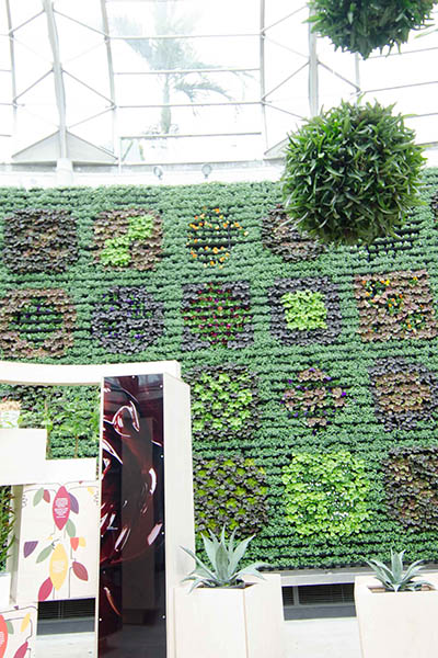 RBGS Green wall-4-2-400wx600h