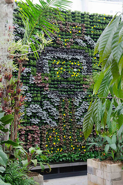 RBGS Green wall-49-2-400x600h