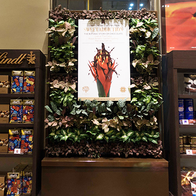 casual-green-wall-cabinet-wall-rbg-lindt-cafe-5-cropped