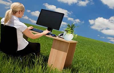 desk plant nature