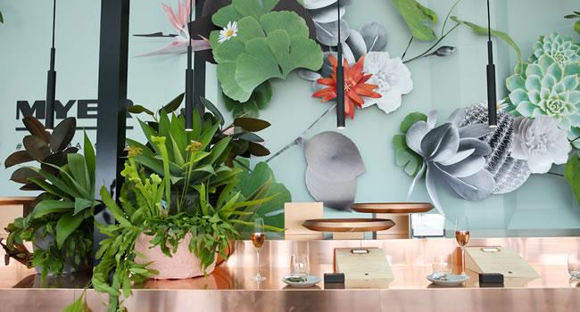 melbourne cup meyer super botanica