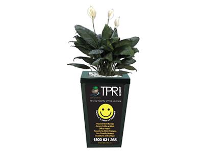 Pot Plant Marketing Smiley Face