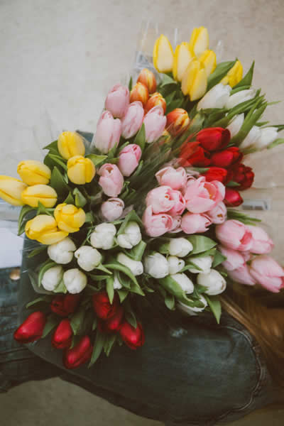 bunches of fresh flowers