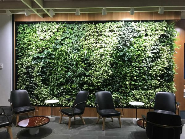 green wall in foyer