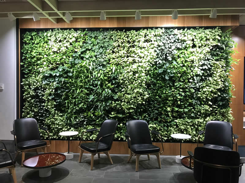 green wall in foyer
