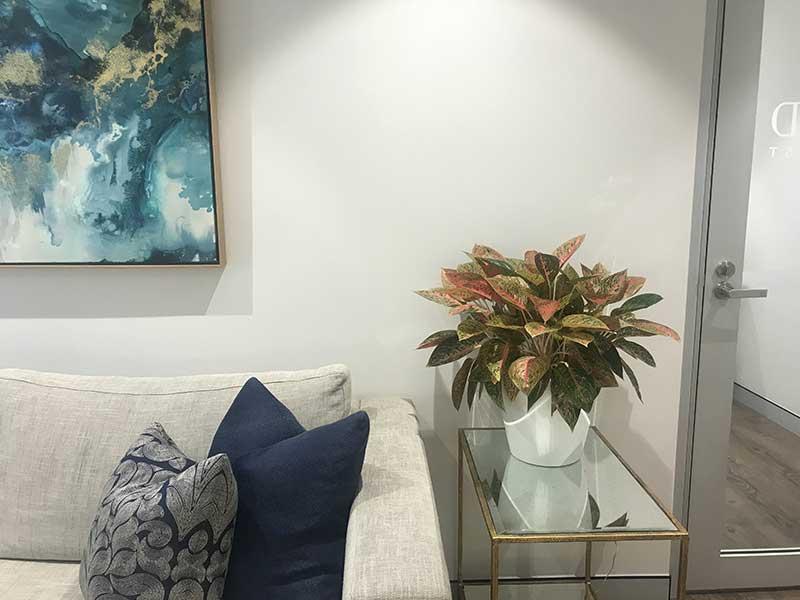 indoor plants in reception area