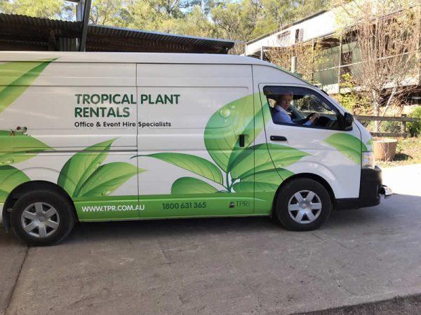 tropical plant rentals parramatta van