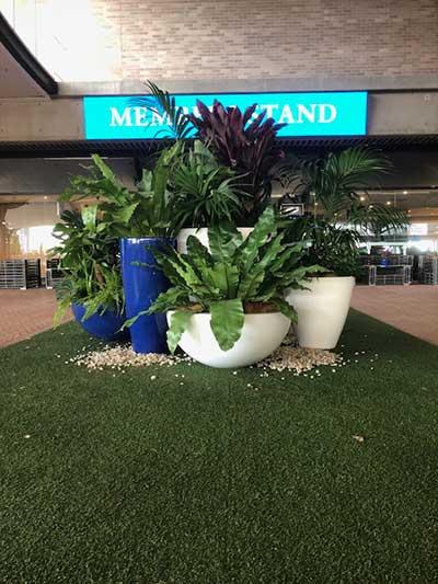 casual plant hire races
