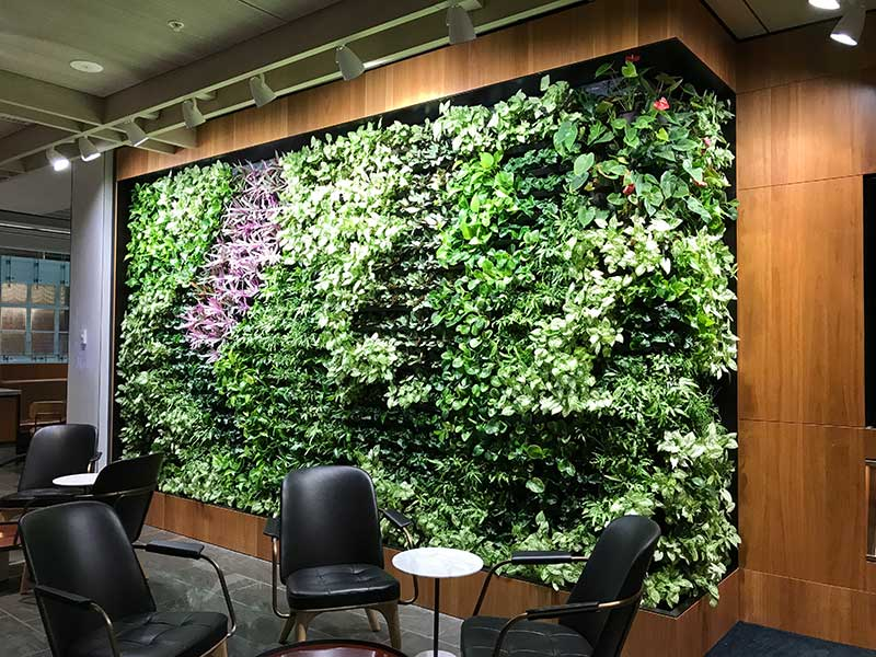 green wall design for office