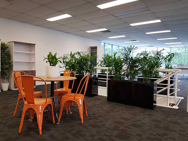indoor office plants black troughs