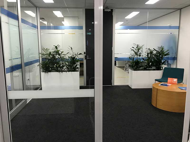 white troughs indoor plant hire palms