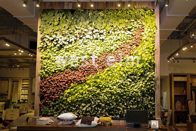 west elm melbourne green wall