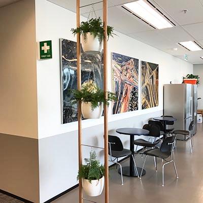 fern hanging pots timber vertical ladder-400x400