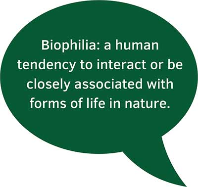 Biophilia speech bubble