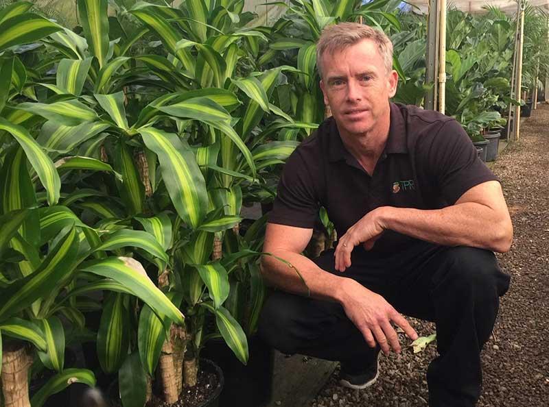 andrew hunter valley indoor plant hire technician