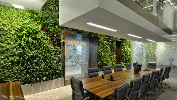 gsky green wall hire