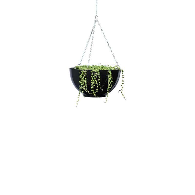 string of pearls hanging bowl black