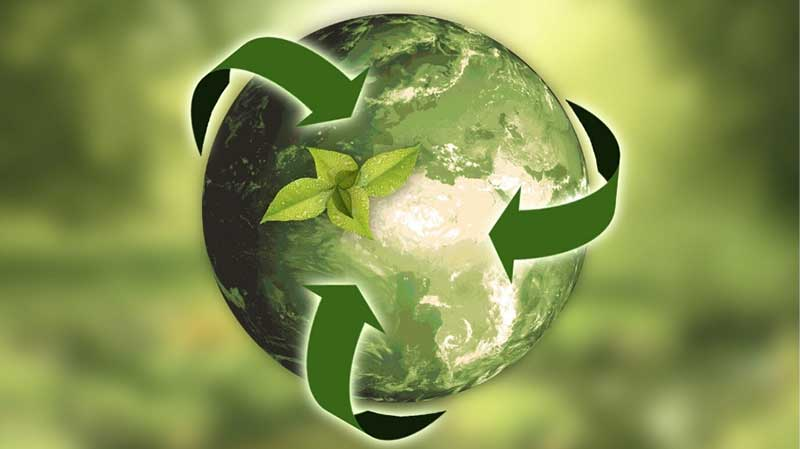 Tropical Plant Rentals Sustainability