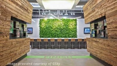 biophilic design green wall and natural elements