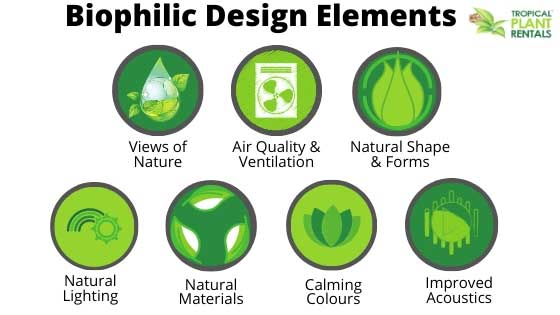 biophilic design elements tropical plant rentals