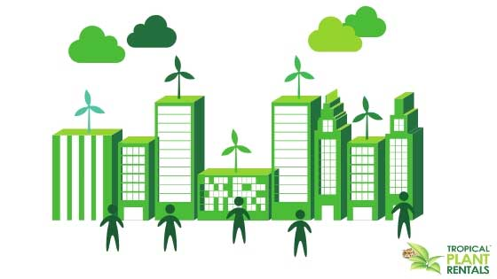 biophilic design green building tropical plant rentals