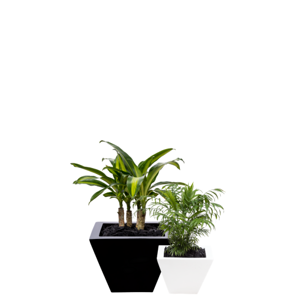 pot range table wedges