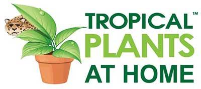 Tropical Plants at Home logo
