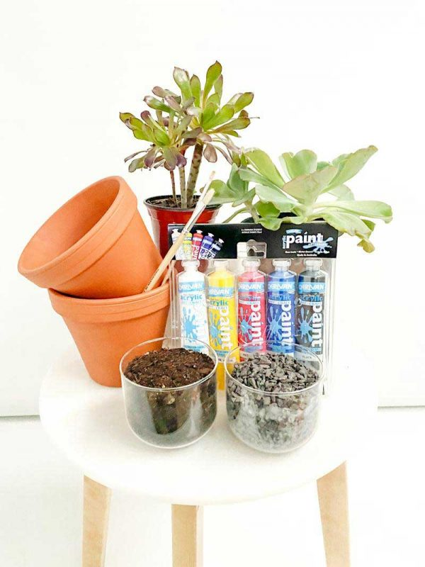 plants at home kids kit