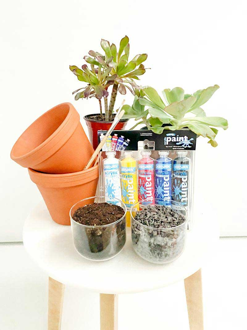plants at home kids kit