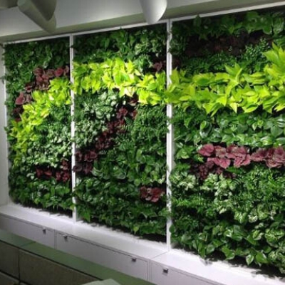 cabinet wall vertical garden display trio