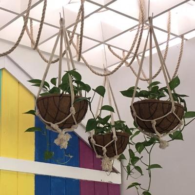 devils ivy hanging custom pots nautical theme