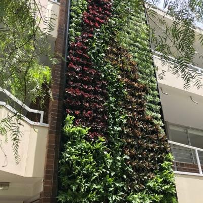 exterior living green wall