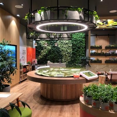 green star certified office plants 2